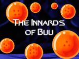 The Innards of Buu