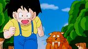 Son Gohan corre insieme alla tigre