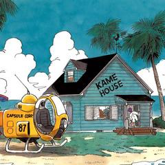 La Kame House come appare nelle illustrazioni a colori nel manga e negli artbook.