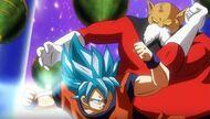 Goku vs Toppo