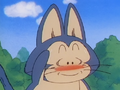 Puar embarrassed