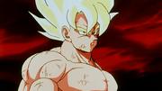 Son Goku vuole finire lo scontro