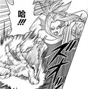 Darkori attack
