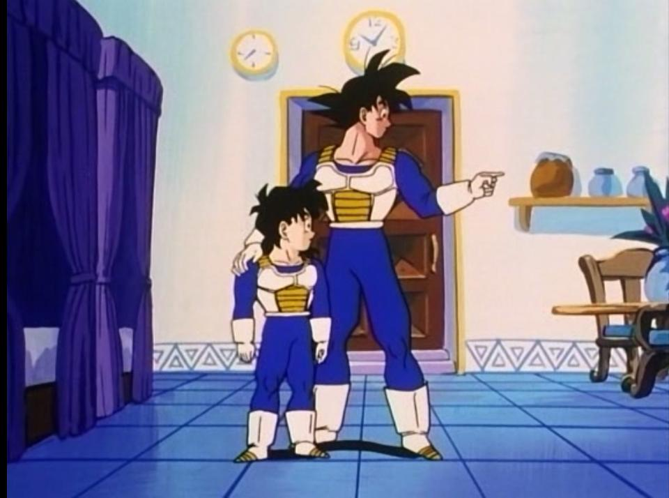 gohan and goku in the hyperbolic time chamber