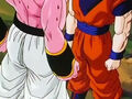 Dbz248(for dbzf.ten.lt) 20120503-18252864