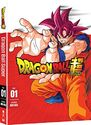 DBSuper part One DVD