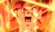 Goku Super Saiyajin Dios (4)