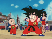 Episodio 19 (Dragon Ball)