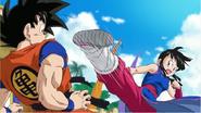 DBK Goku VS Chi-Chi