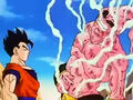 Dbz249(for dbzf.ten.lt) 20120505-11571277