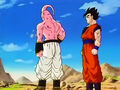 Dbz249(for dbzf.ten.lt) 20120505-11575539
