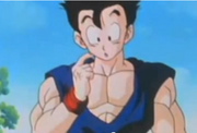 A confused gohan