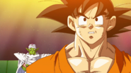 Goku-and-Piccolo-DBS
