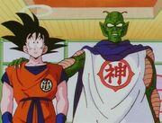 Kamisama y Goku