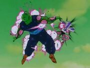 Piccolo vs Freezer5
