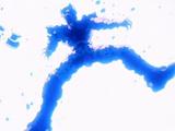 Dragon Ball Z épisode 191