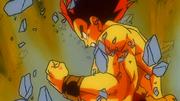 Goku FSS
