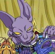 Beerus eat food