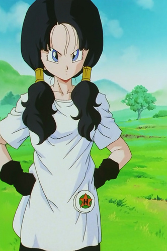 https://vignette.wikia.nocookie.net/dragonball/images/2/29/Videl_DBZ_Ep_207_001.png/revision/latest/scale-to-width-down/332?cb=20170917055009