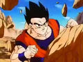 Dbz249(for dbzf.ten.lt) 20120505-11564122