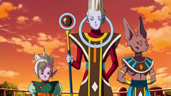 Shin is Whis Bill