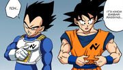 Goku and Vegeta Patrol