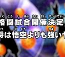 O torneio de artes marciais vai acontecer! O capitão do time é mais poderoso que Goku!