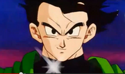 Gohan before his fight with dabura