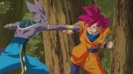 Beerus VS Goku (film 2013)