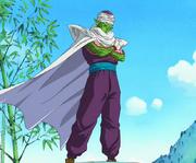 Piccolo Il ritorno di Goku dei compagni