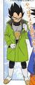 Winter Vegeta