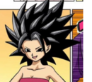 Caulifla/Gallery