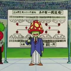 L'annunciatore presenta il torneo.