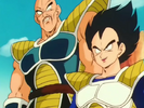 NappaVegetaVsZFightersNV