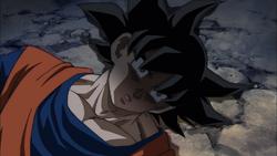 RIP Goku S