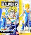 RealWorks6Vegetto