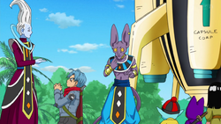Whis Bills is God
