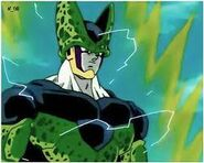 Cell Tomi