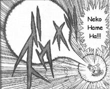 NekoHameha