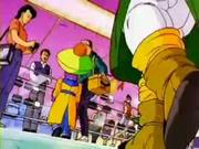 C-15 e C-14 alla ricerca di Goku
