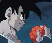 Tullecefruit