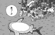Monster Shark island