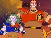 Silver e Gold vengono fermati da Son Goku