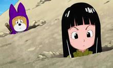 Shu e Mai ala ricerca di tesori
