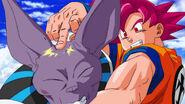 Goku Beerus Flick