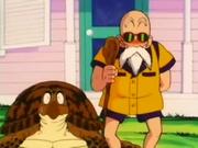 Turtle&Roshi