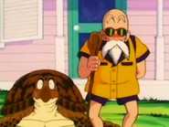 Turtle&Roshi