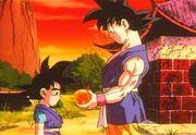 Goku e Goku Jr.