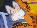 Puar is scared