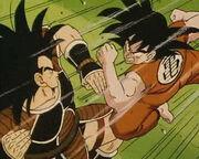 Goku vs radish